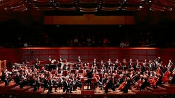 SF Symphony Musicians